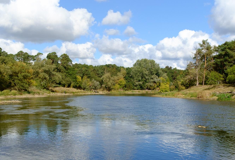 Wielkopolski Park Narodowy: Puszczykowo
