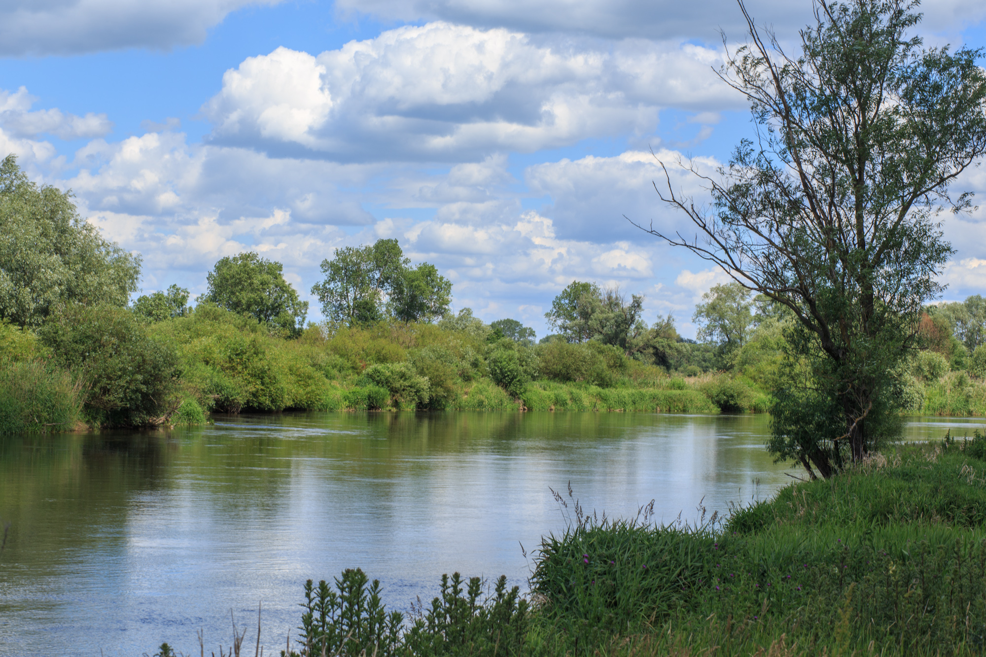 Nadwarciański Park Krajobrazowy: Ciążeń