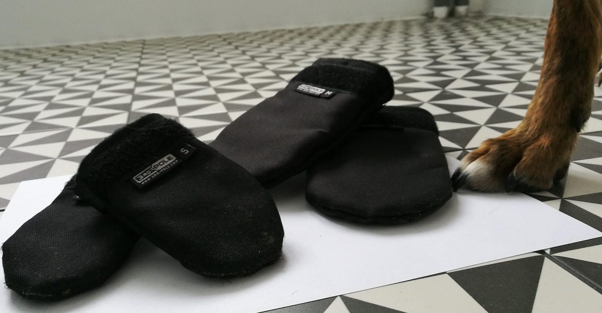 Sprzęt zimowy: psie buty od 3RD-POLE