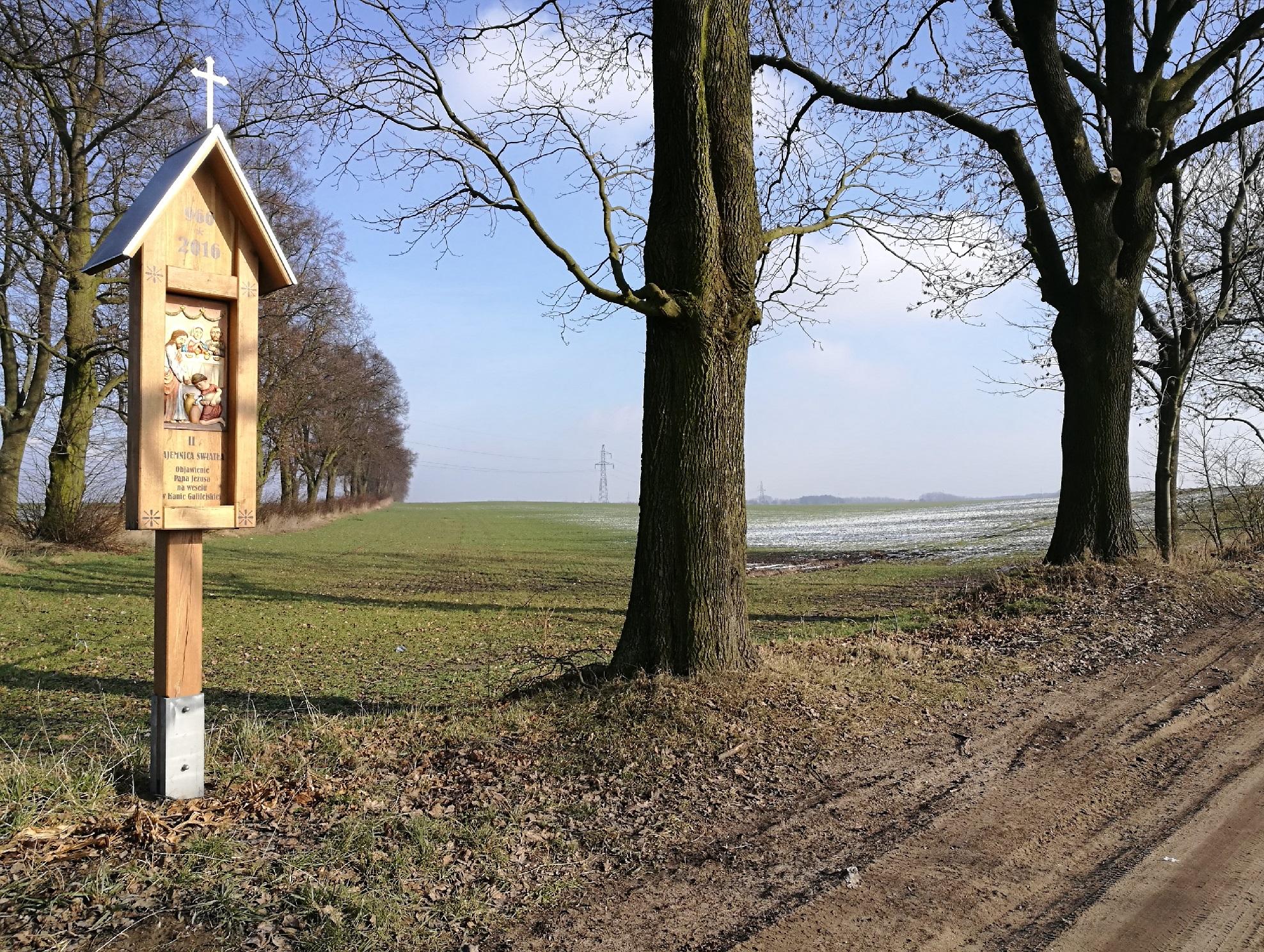 Kicin – Wierzenica: spacer przez pola z domieszką architektury sakralnej